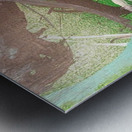 KIMG4121 Metal print