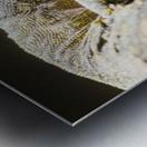 komodo dragon Metal print