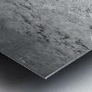 Crystal Clear B&W Metal print