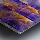3B3AC095 1332 4798 900D 7F2FA05402B8 Metal print