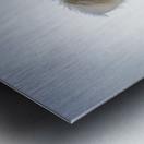 IMG_1184 2 Metal print