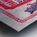 1911 Cubs Season Pass Metal print