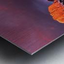 Ha Ling Mountain Range Sunrise Metal print