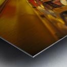 DSC_3846 Metal print