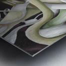 Interlacing Dramatic Contemporary Abstract Metal print