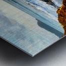 Jaco Beach Metal print