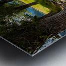 T.a. Moulton Barn - Grand Teton Metal print