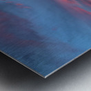 EB65B69C 18F2 4C32 894F 86CD3879AE94_1_105_c Metal print