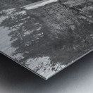 Multnomah Metal print
