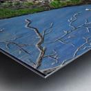 Mossy Branch Metal print
