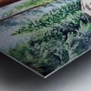 National Park Sequoia Metal print