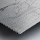 Modigliani - Sitting man Metal print