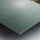 Sunlight Metal print