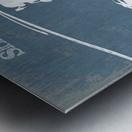 seahawk Metal print
