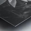 Symmetry of the nature Metal print