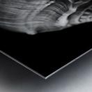 Series of shells Metal print