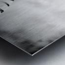 AdriaanPrinsloo 6718 Metal print