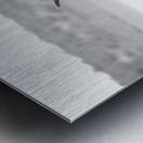AdriaanPrinsloo 6071 Metal print