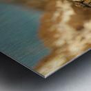 AdriaanPrinsloo 8074 Metal print