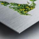 Light Continent Ciriel Metal print