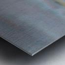 DSC_1012 Metal print