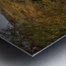 Elan valley landscape Metal print