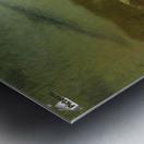 Moonlit Landscape Metal print