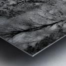 Obscur Metal print