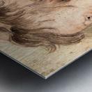 Son Albert by Rubens Metal print
