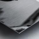 Blacked Capped Chickadee ap 1813 B&W Metal print