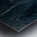 Great White Egret ap 1839 B&W Impression metal
