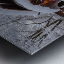 Forgotten ap 2857 Metal print