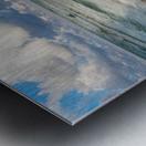 Reflections ap 2416 Metal print