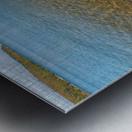 Driftwood ap 2481 Metal print