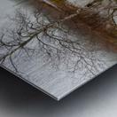 Beaver Pond ap 2357 Metal print