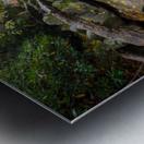 Reflections ap 2476 Metal print
