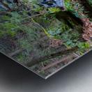 Kildoo Run apmi 1751 Metal print