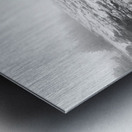 Lone Pine ap 2284 B&W Metal print