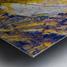 Water Colors ap 1590 Metal print