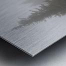 Pines apmi 1602 Metal print