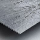 Treeline apmi 1573 Metal print
