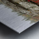 Alpine Tundra apmi 1812 Metal print