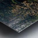 Alisa - Crystal apmi 1975 Metal print