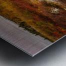 Colors of Nature apmi 1782AL Impression metal