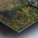 Slippery Rock Creek apmi 1959 Metal print