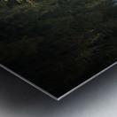 Reflection on a Bonsai Tree Metal print