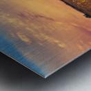 The Aeronaut Metal print