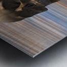 Sapiens Metal print