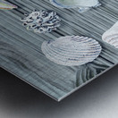 Silver Gray Seashells Heart On Ocean Shore Wooden Deck Beach House Art  Metal print