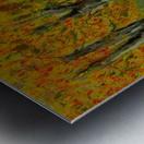 Autumns Pathway Metal print